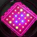 Grow Light Distinguishing Features