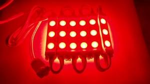 City Link Red (1) Night