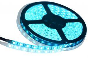 DSC_0365-JUST LED US
