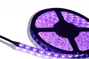 DSC_0366-JUST LED US