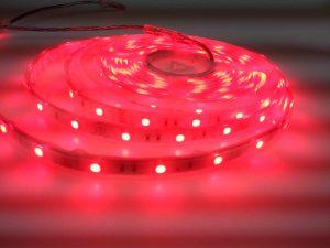 IMG20131227180024-JUST LED US