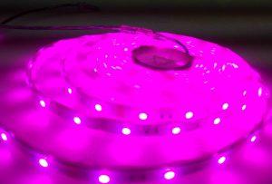 IMG20131227180109-JUST LED US