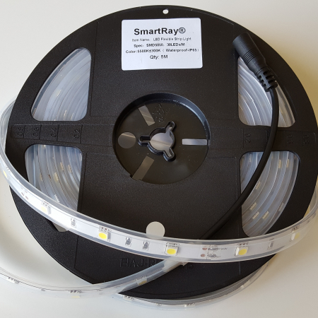 SmartRay5050-30LED-12mm-Ip65-JUST LED US