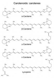 Carotenoids : Carotenes