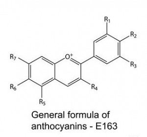 Anthocyanins